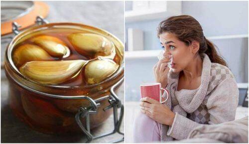 Lepsze oddychanie zapewni Ci miód z czosnkiem