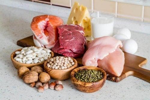 Różne typy białka w pożywieniu