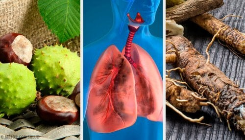 Zdrowe płuca – 4 naturalne remedia