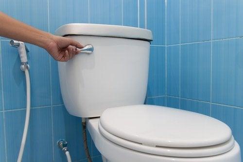Spłuczka w toalecie Toalety publiczne