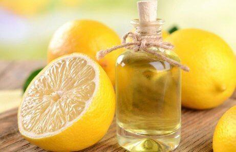 Cytryna i oliwa