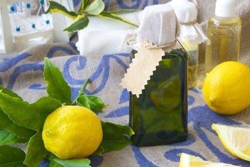Cytryna na stole. Owoce cytrusowe