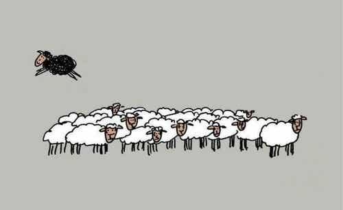 Czarna owca - cztery powody, dla których warto nią być