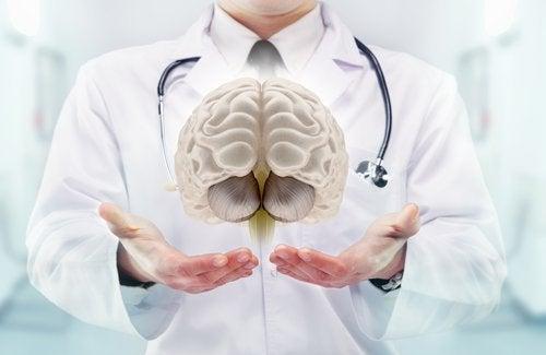 Mózg a miniudar