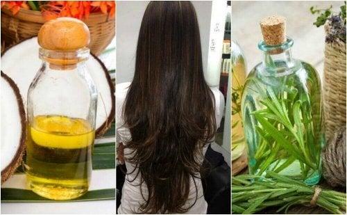Porost włosów - stymuluj go domowym sposobem