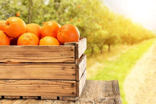 pomarańcze w skrzynce
