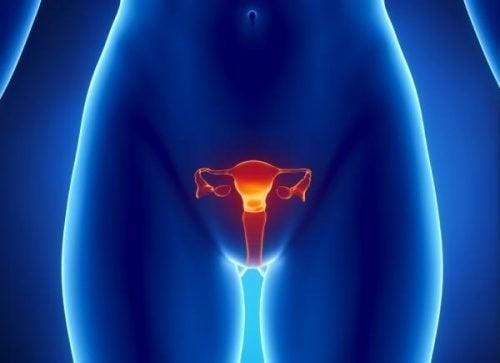 Rak jajnika – jak jest wykrywany?