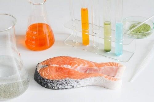 Ryby, których nie należy jeść – 6 rodzajów