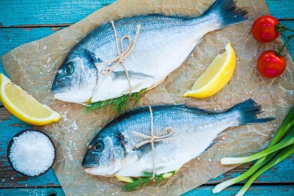 Ryby białko a głód