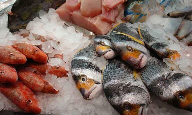Ryby w lodzie