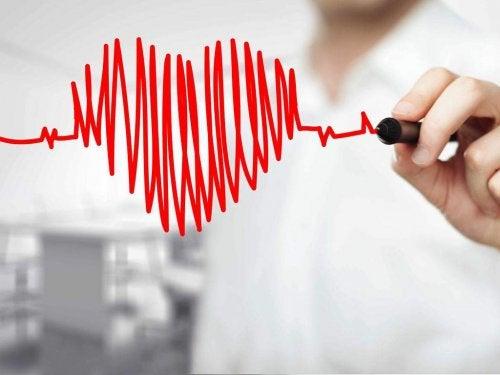 Zdrowe serce - ekogram