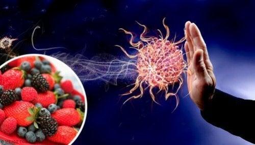 Układ immunologiczny: wzmocnij go dzięki tym produktom
