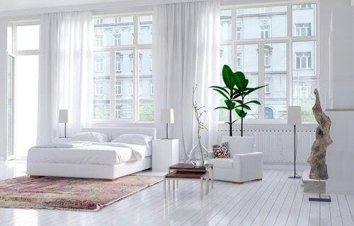 Jasna i czysta sypialnia