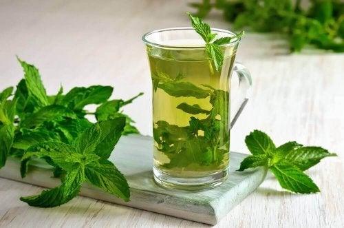 Herbata miętowa – dlaczego warto ją pić?