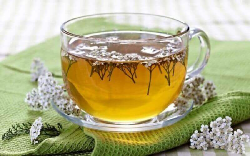 Herbata z krwawnika