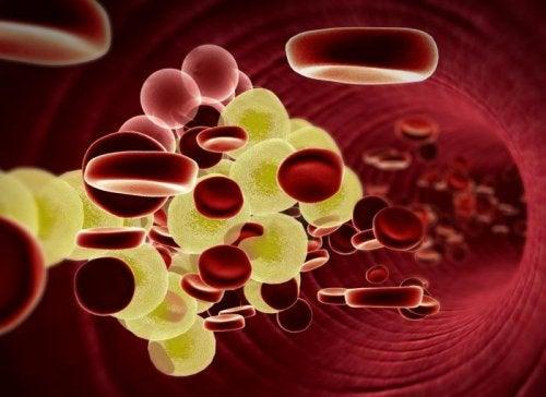 cząstek cholesterolu