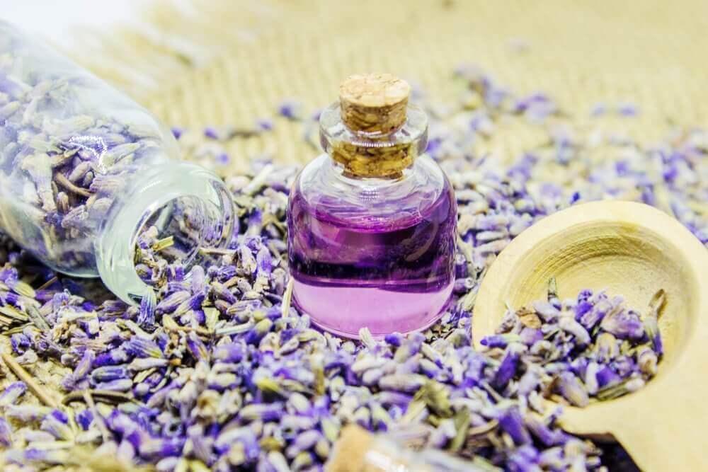 Olejek lawendowy – sposób na jego wykonanie i użycie