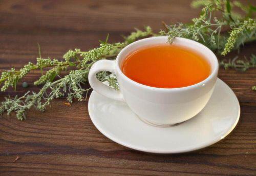 herbata z piołunu cukrzyca