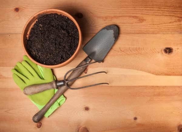ogrodnictwo łopatka doniczka rękawice