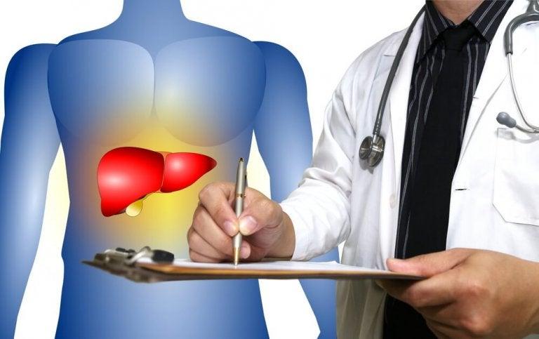 Stłuszczenie wątroby – zwalcz je naturalnymi metodami