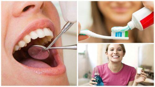Higiena jamy ustnej i wpływ jakie mają na nią suszone śliwki