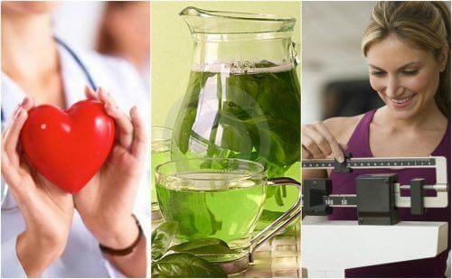 Spożywanie zielonej herbaty - 6 ważnych korzyści