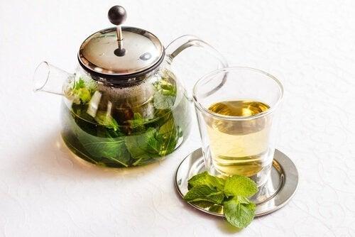 herbatka z mięty