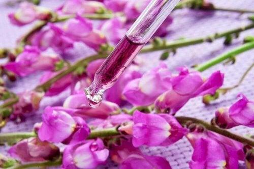 olejek kwiaty bacha