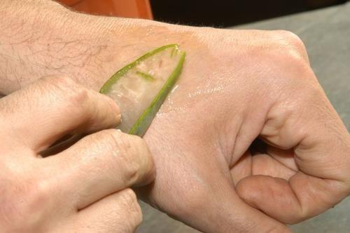 Nacieranie skóry aloesem