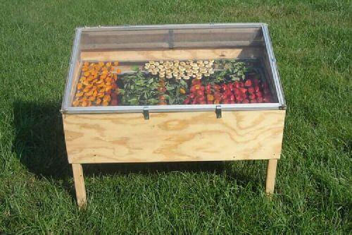 Odwadniacz słoneczny dla produktów spożywczych