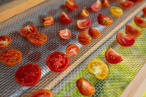 Suszenie pomidorów