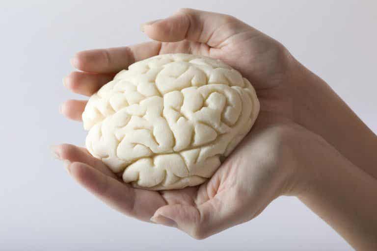 Trening mózgu, czyli 5 sposobów na poprawę pamięci