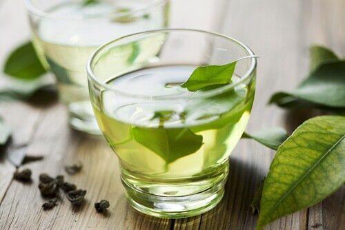 Herbatka z boldo