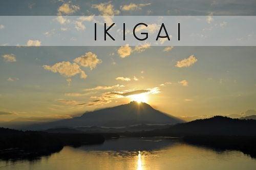 Ikigai - przeczytaj o japońskim sekrecie pomagającymw lepszym życiu
