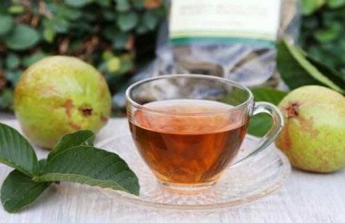 Herbata z guawy