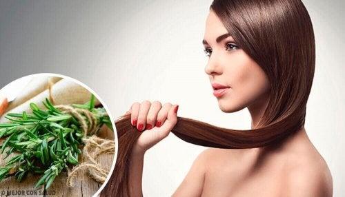 Wzrost włosów - zioła i przyprawy, które go pobudzają