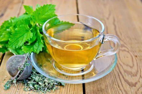 Herbatka z melisy na problemy trawienne
