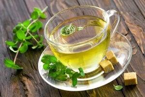 Napar z mięty na szybszy metabolizm