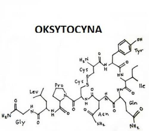 Oksytocyna- jak działa ten hormon miłości?