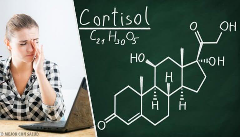 Kortyzol – zdrowe nawyki obniżające jego wysoki poziom