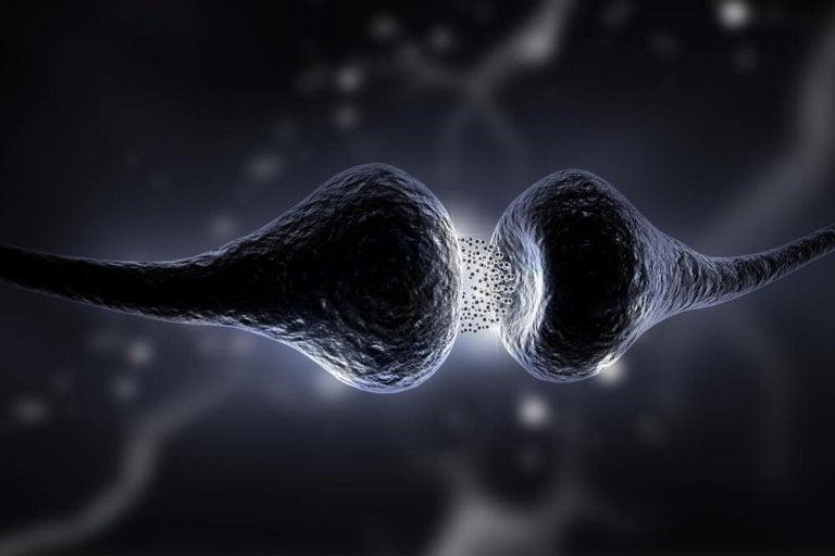 Dieta serotoninowa - dowiedz się na czym polega