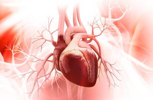 Arytmia serca może oznaczać zarówno zwiększenie jak i zmniejszenie tempa jego bicia.
