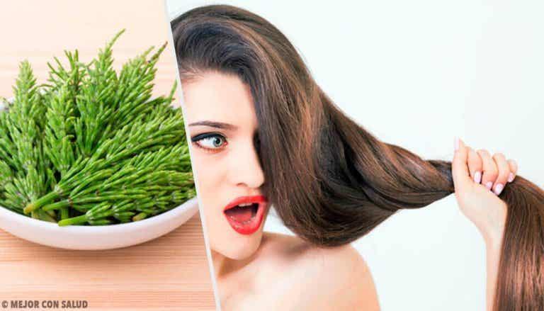 Skrzyp polny - jak go używać, by pomógł w szybszym rośnięciu włosów