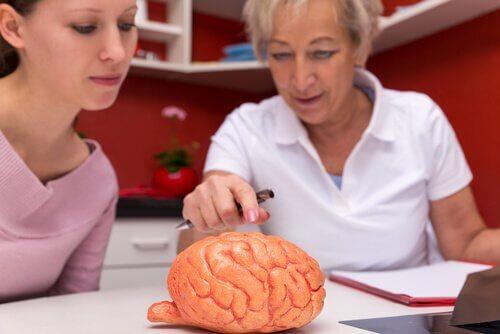 Kobiety oglądają mózg