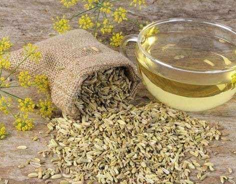 Herbatki z kopru włoskiego na odchudzanie – 3 przepisy