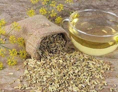 Herbatki z kopru włoskiego na odchudzanie - 3 przepisy