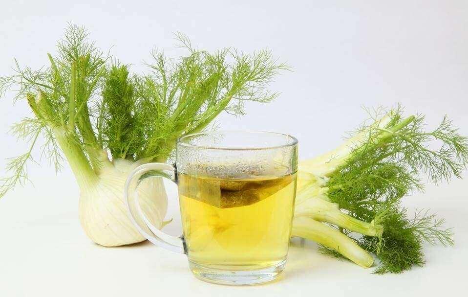 Herbatka ze świeżego kopru