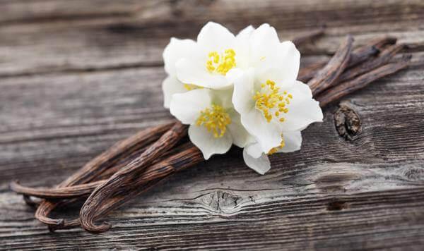 Kwiat wanilii neutralizuje zapach wilgoci