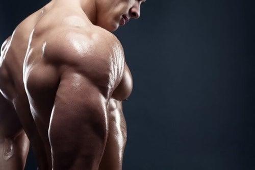 Przyrost masy mięśniowej – 4 przepisy na pyszne śniadania