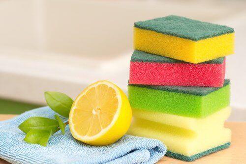 Gąbki i szmatki wymagają regularnej dezynfekcji.